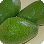 Avocados für Guacamole