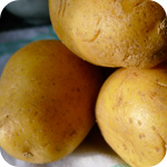 Kartoffeln fürs Gratin